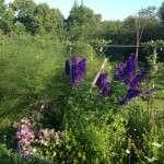 Trädgårdstema i bageriet