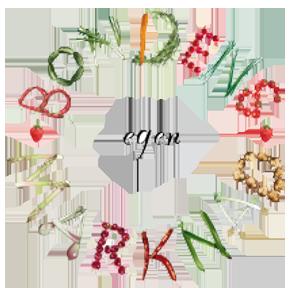 bondens_logo